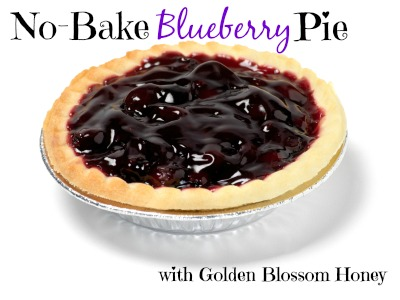 Blueberry Tart -Photographed on Hasselblad H1-22mb Camera